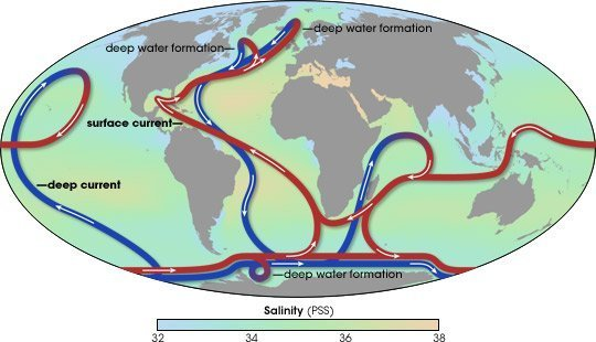Thermohaline circulation drives ocean currents, which, in turn, influence weather patterns
