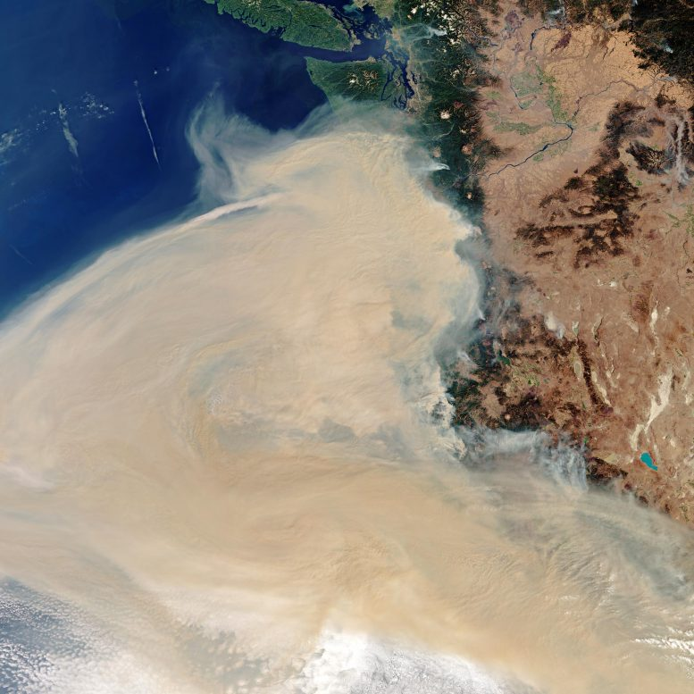 Smoke from wildfires in Washington, Oregon, and California drifts over the Pacific Ocean.