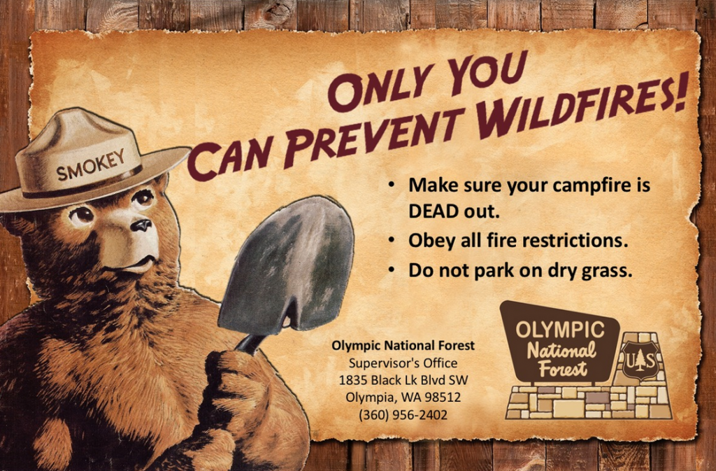 """A promotional """"Only You Can Prevent Wildfires"""" promotional poster featuring the iconic Smokey the Bear created by the U.S. Forest Service."""